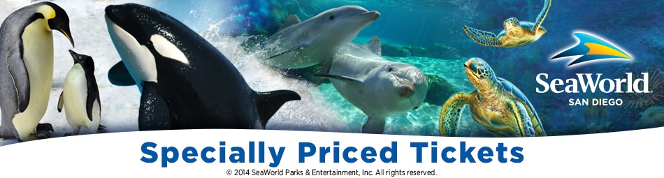 Busch Gardens U0026 SeaWorld