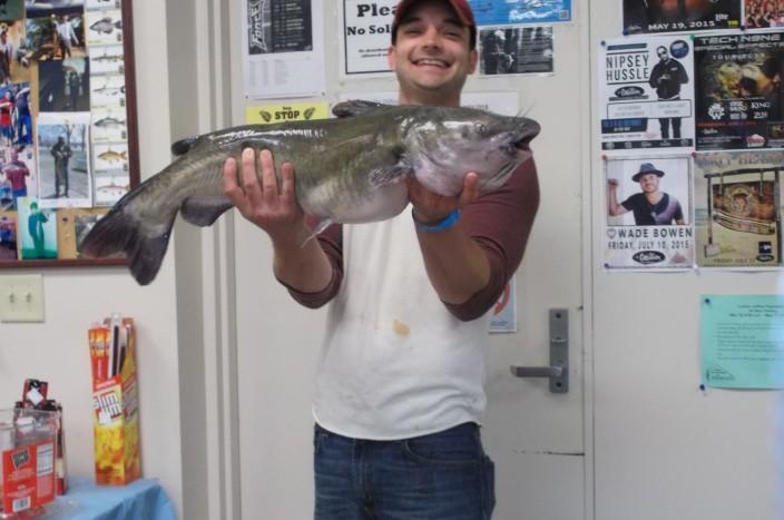 13lb catfish