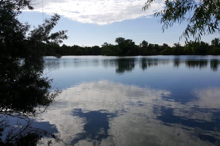 SBEA Lake 2
