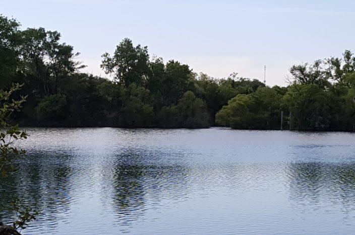 SBEA Lake