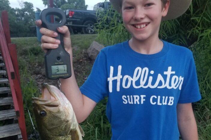 Boy Hollister shirt summer 2020